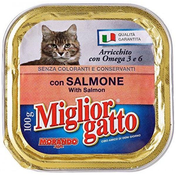 MIGLIOR GATTO V.100GR SALMONE