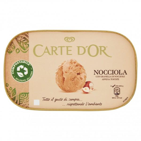 CARTE D'OR NOCCIOLA GR 400