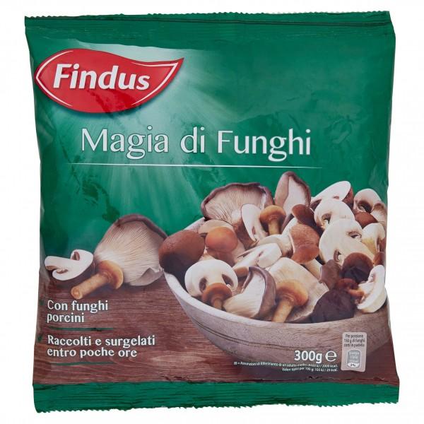 FINDUS MAGIA DI FUNGHI 300 g