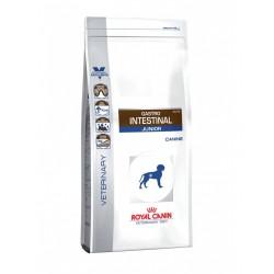 ROYAL DOG VD GASTROINT.2 KG