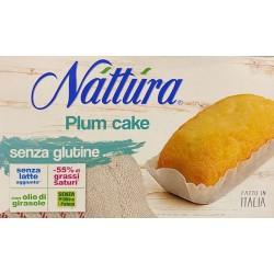 NATTURA PLUM CAKE SENZA GLUTINE CONFEZIONE DA 20